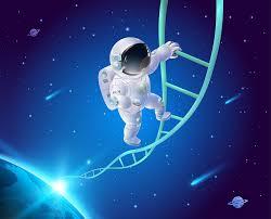 Определение родства по ДНК