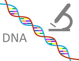 Центр генетической диагностики