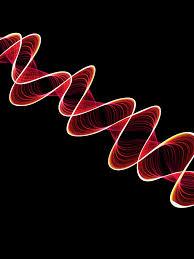 Образец заявления на ДНК экспертизу