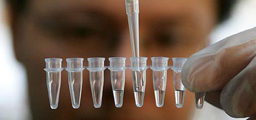 Новые генетические исследования принесли результат