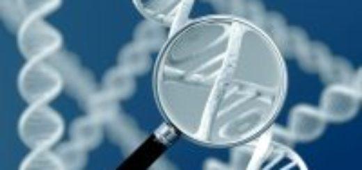 Анализ ДНК где можно сделать