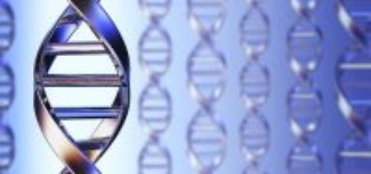 Анализ крови на ДНК