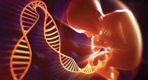 Генетическое установление отцовства