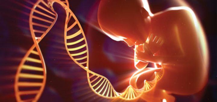 Генетическая экспертиза ребенка один
