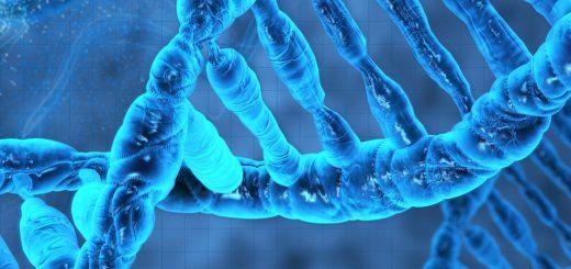 Городской ДНК центр