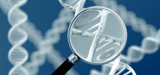 Генетическое исследование ДНК