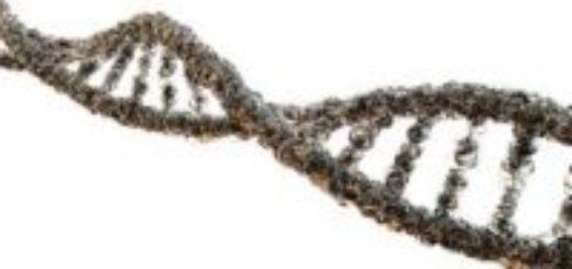 Анализатор ДНК
