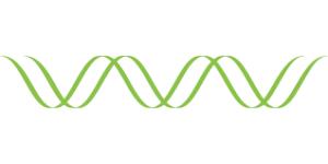 Выполнение исследований ДНК