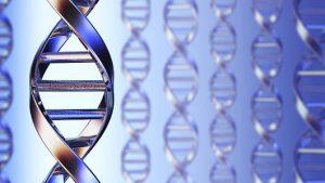 Молекулярно-генетический центр