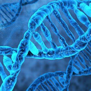 ДНК центр Москва