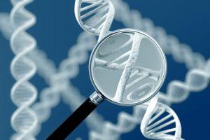 Медико-генетическая экспертиза