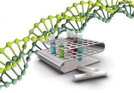 Как делают ДНК