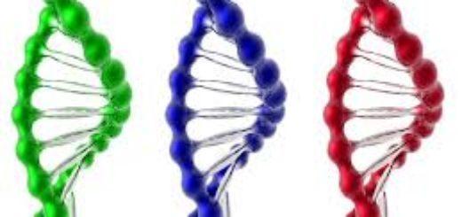 Как сделать ДНК