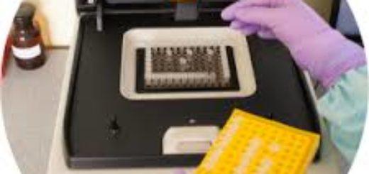 Молекулярно-генетическая экспертиза