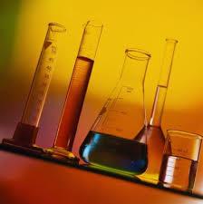 Молекулярно-генетическая судебная экспертиза