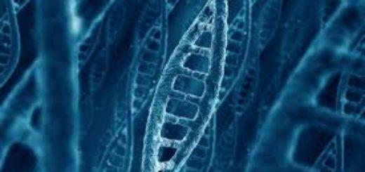 Назначение генетической экспертизы