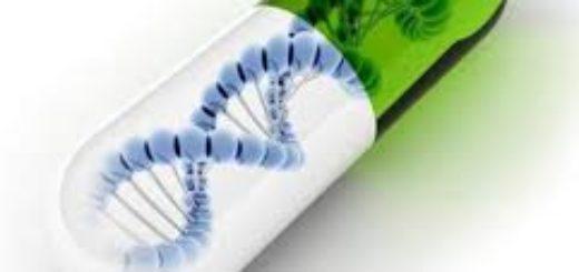 Проведение генетической экспертизы