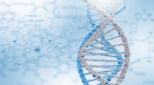 Центр генетической экспертизы