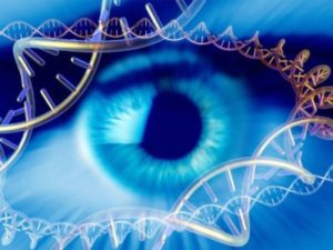 Экспертиза в центре ДНК диагностики