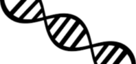 В Таджикистане начнут проводить экспертизу ДНК