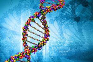 Как назначается экспертиза ДНК