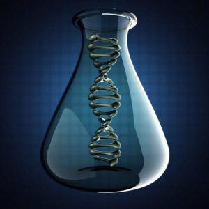 Молекулярно-биологические методы исследования