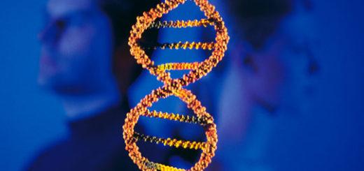 Молекулярно-биологическое исследование