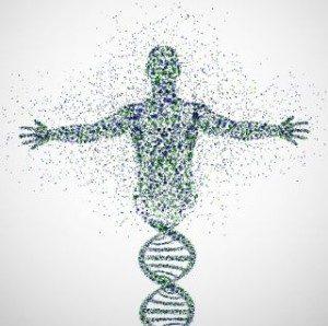 Проведение ДНК