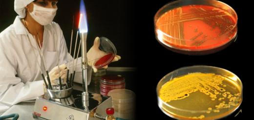 Медико-биологические исследования