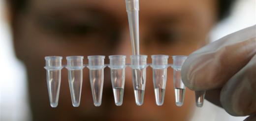 Как выявить измену жены — тест ДНК
