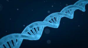 Можно ли в Москве сделать анализ ДНК?