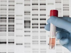 Сколько стоит экспертиза ДНК в Москве?