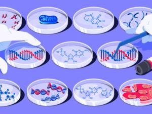 Сколько стоит экспертиза ДНК на отцовство в Москве