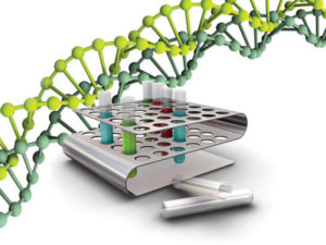 Сколько стоит экспертиза ДНК ребенка в Москве?
