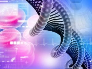 Стоимость анализа ДНК на отцовство