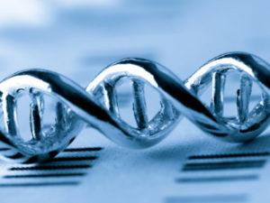 Стоимость генетического анализа