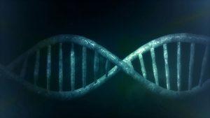 Можно ли сделать анализ ДНК?