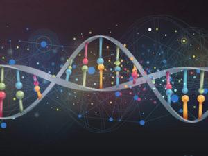 Стоимость ДНК в Москве