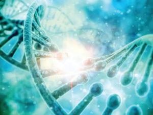 Стоимость определения отцовства по ДНК
