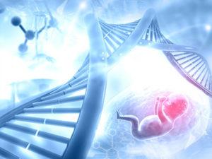 Стоимость экспертизы ДНК в Москве