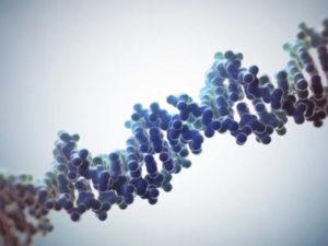 Судебный тест ДНК цена в Москве