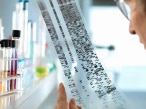 Тест ДНК генетическая экспертиза цена
