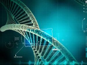 Тест ДНК на материнство цена