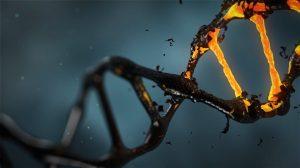 Молекулярно генетическая судебная экспертиза