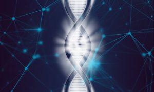 Молекулярно генетический центр