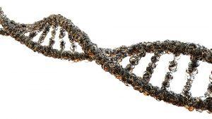 Молекулярно генетическое исследование