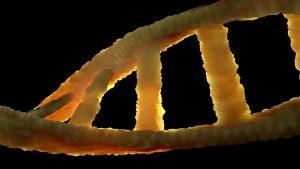 Молекулярно-генетическая диагностика