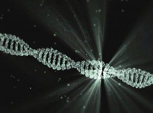 Молекулярно-генетическая экспертиза ДНК