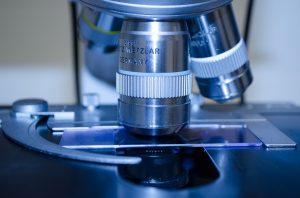 Молекулярно-генетические анализы ДНК