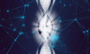 Судебно-медицинская, молекулярно-генетическая экспертиза